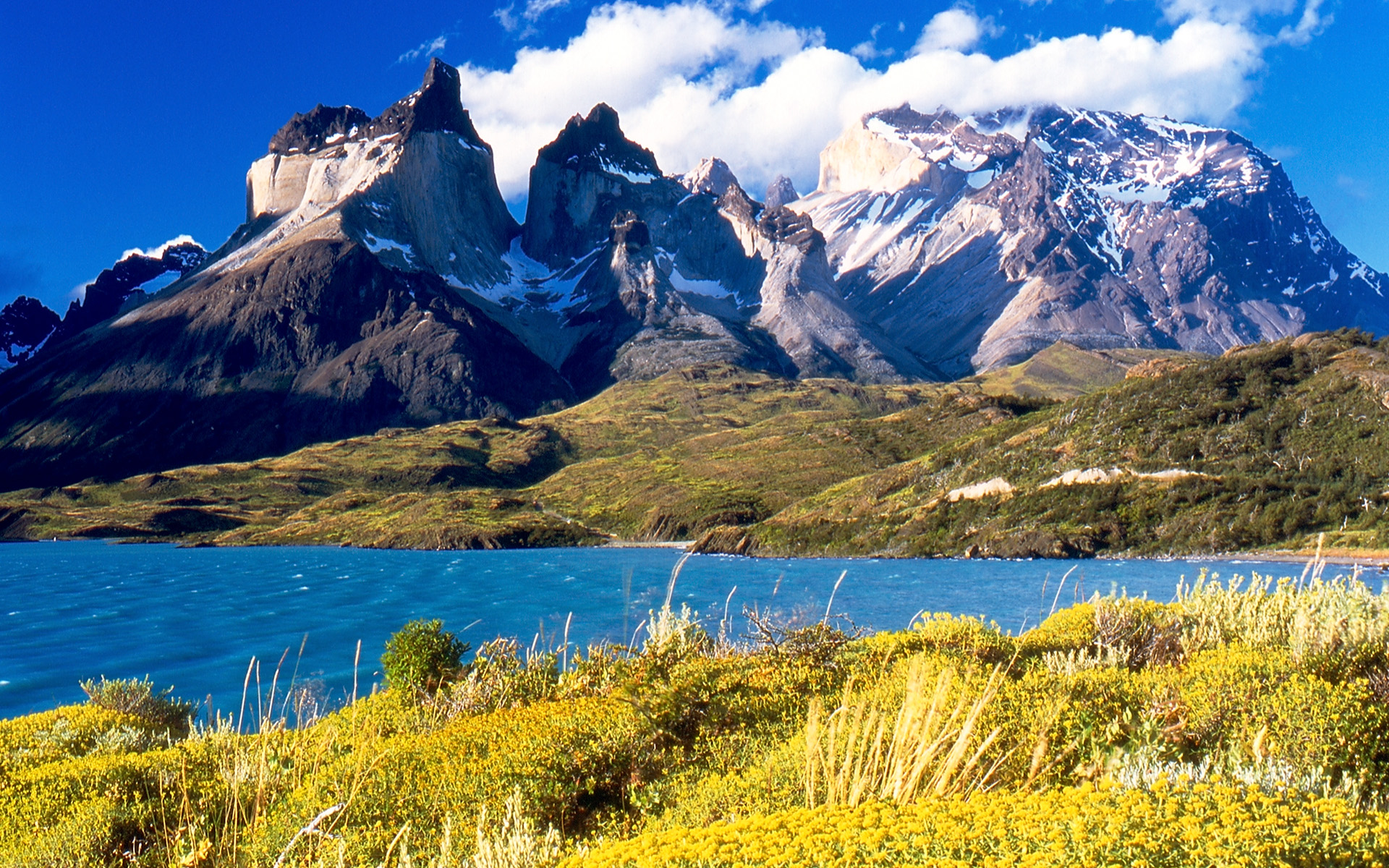 Patagonia Low Cost