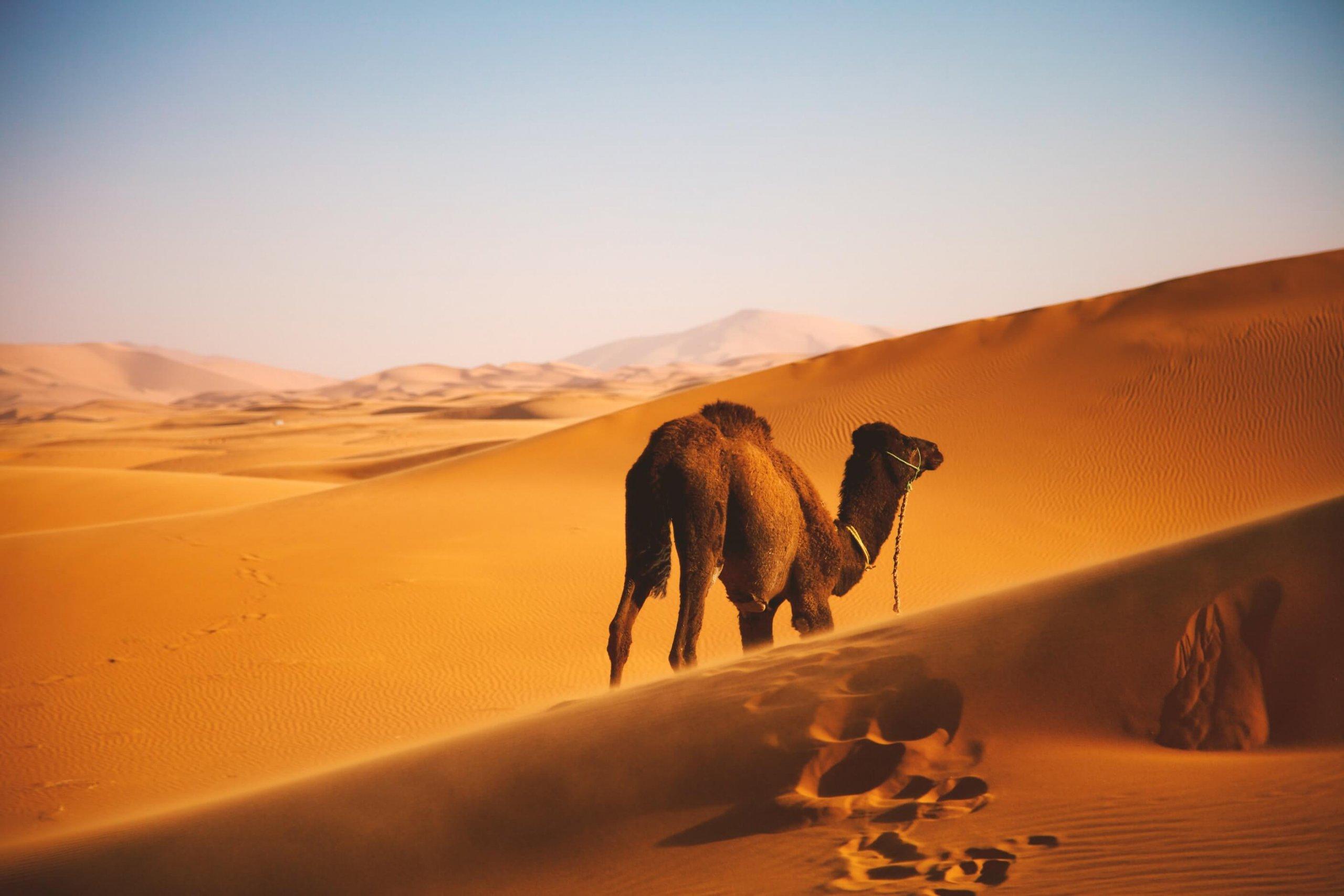 marocco 7 citta da vedere assolutamente