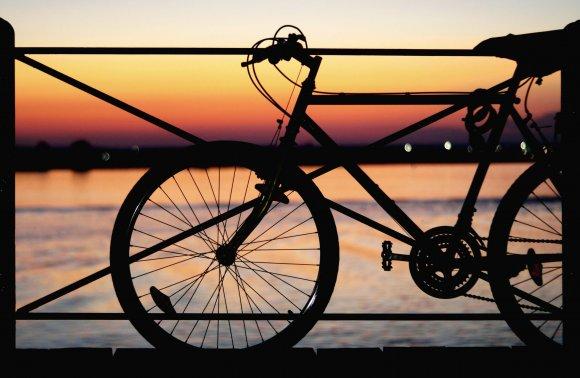 In bici sul Delta del Po: Valli e Sapori